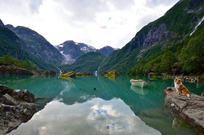 https://folgefonna.info/wp-content/uploads/Bondhusdalen-foto-Øyvind-Heen-1-680x450.jpg